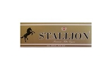 Stallion Filtered Cigars Gold